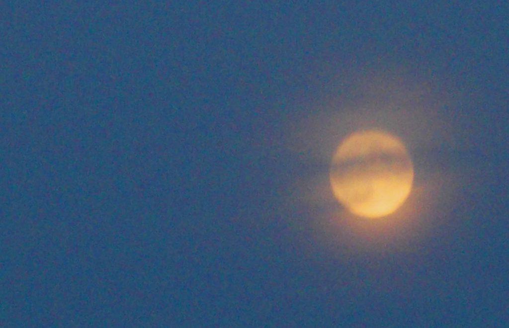 Pallore di luna - Foto Guido Comin PoetaMatusèl
