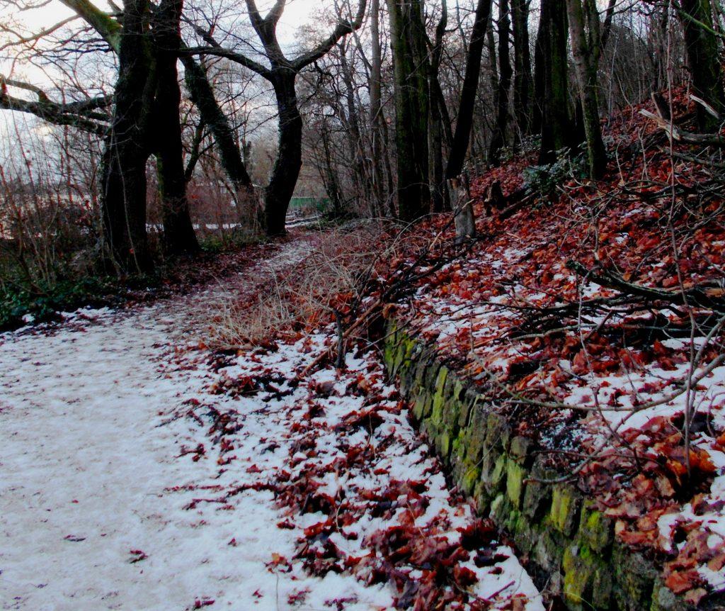 Così, venga pure la neve - Foto Guido Comin PoetaMatusèl