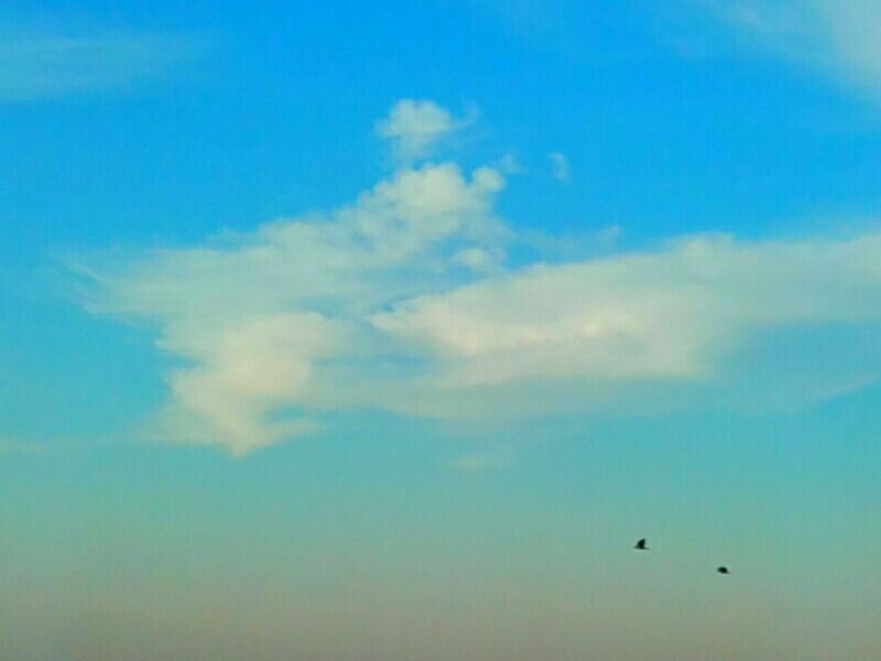 Nuvole, come panna montata a casaccio - Foto Guido Comin PoetaMatusèl
